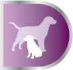 PRODUCT_DOG_HealthBenefits_0003s_0001_Purple_Colostrum.jpg