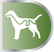 PRODUCT_DOG_HealthBenefits_0001s_0001_Green_Urinary.jpg