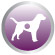 PRODUCT_DOG_HealthBenefits_0003s_0004_Purple_Digestion.jpg